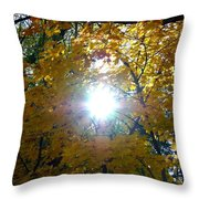 Country Color 3 Throw Pillow
