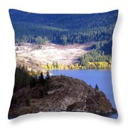 Country Color 4 Throw Pillow