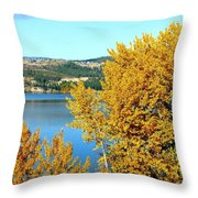 Country Color 5 Throw Pillow