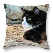Country Kitty Throw Pillow by Art Dingo
