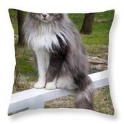 Country Life Is Good Throw Pillow