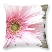 Country Pink Throw Pillow