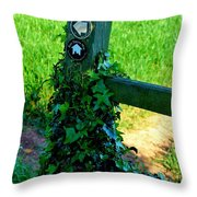 Country Post Throw Pillow