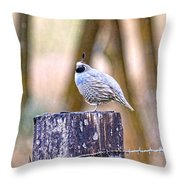 Country Quail Throw Pillow