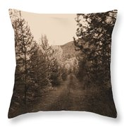 Country Road In Sepia  Throw Pillow