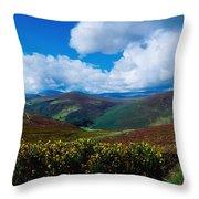Country Road, Near Luggala Mountain, Co Throw Pillow