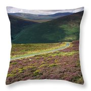 Country Road Passing Through A Throw Pillow