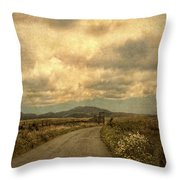 Country Road With Wildflowers Throw Pillow