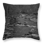 Country Stream Bw Throw Pillow