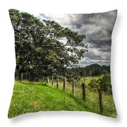 Countryside With Old Fig Tree Throw Pillow