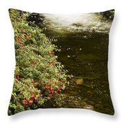 County Kerry, Ireland Fuchsia Bush Throw Pillow