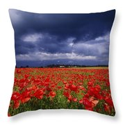 County Kildare, Ireland Poppy Field Throw Pillow