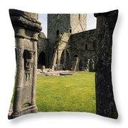 County Kilkenny, Ireland Jerpoint Abbey Throw Pillow