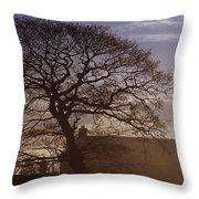 County Tyrone, Ireland Winter Morning Throw Pillow