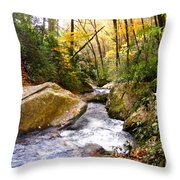 Courthouse River In The Fall 2 Throw Pillow