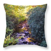 Courthouse River In The Fall 3 Throw Pillow