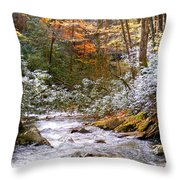Courthouse River In The Fall Throw Pillow