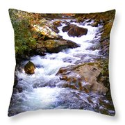 Courthouse River In The Fall Filtered Throw Pillow