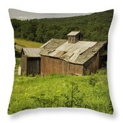Coventry Barn Throw Pillow
