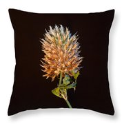 Cover Aglow 1 Throw Pillow