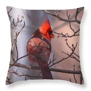 Cover My Back Throw Pillow