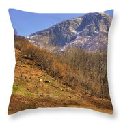 Cowhouse And Snow-capped Mountain Throw Pillow