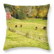 Cows Grazing On Grass In Farm Field Fall Maine Throw Pillow