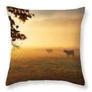 Cows In A Foggy Field Throw Pillow