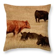 Cows Throw Pillow by Methune Hively