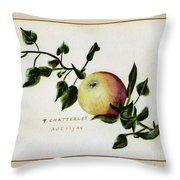 Coxs Apple 1922 Throw Pillow