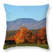 Coxsackie New York State Throw Pillow