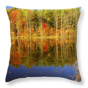 Coxsackie Reflection Throw Pillow