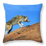 Coyote Climbs Mountain Throw Pillow