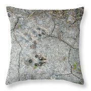 Coyote Tracks Throw Pillow