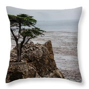 Cpress Throw Pillow