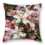 Crabapple Tree Flower Throw Pillow