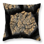 Cracked, Dried Out Mud, Mokolodi Nature Throw Pillow