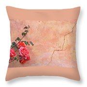 Cracked Wall And Rose Throw Pillow