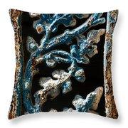 Crackled Coats Throw Pillow