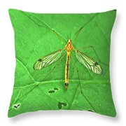 Crane Fly 7623 Throw Pillow
