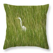 Crane In The Tall Grass On Assateague Island Maryland Throw Pillow