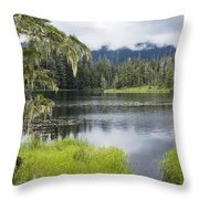 Crane Lake, Tongass National Forest Throw Pillow