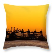 Cranes At Sunset Throw Pillow by Carlos Caetano