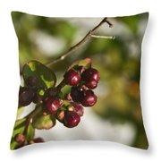 Crape Myrtle Fruit Throw Pillow