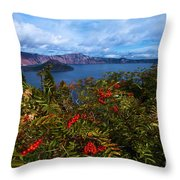 Crater Berries Throw Pillow