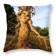 Crater Lake Kachina Throw Pillow
