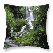 Crawfordsburn Country Park, Co Down Throw Pillow