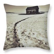 Crawling Home Blues Throw Pillow