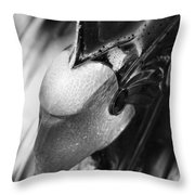 Crazed Warrior 3  Throw Pillow