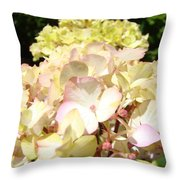 Cream Pink Hydrangea Flowers Art Prints Floral Throw Pillow